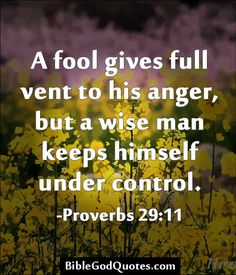 Anger Properly Managed Devotional Series