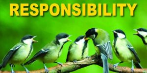 responsibility-2